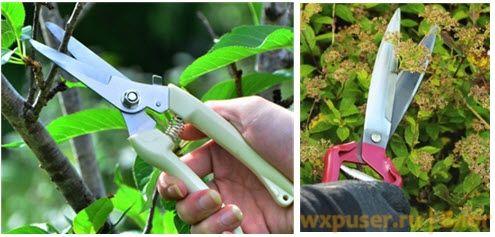 садовые ножницы секатор недорогой