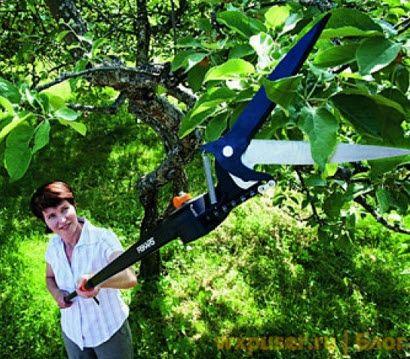 удлиненные садовые ножницы