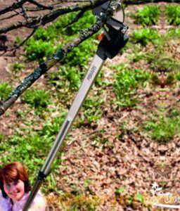 телескопический сучкорез